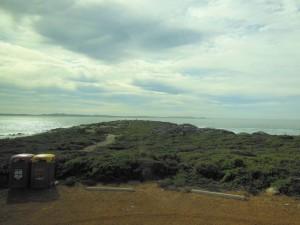 South Australia trip April 2016 052 (1024x768)