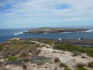 South Australia trip April 2016 066 (1024x768)